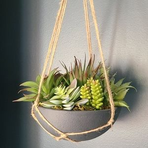 Other - Faux Succulent Hanging Basket